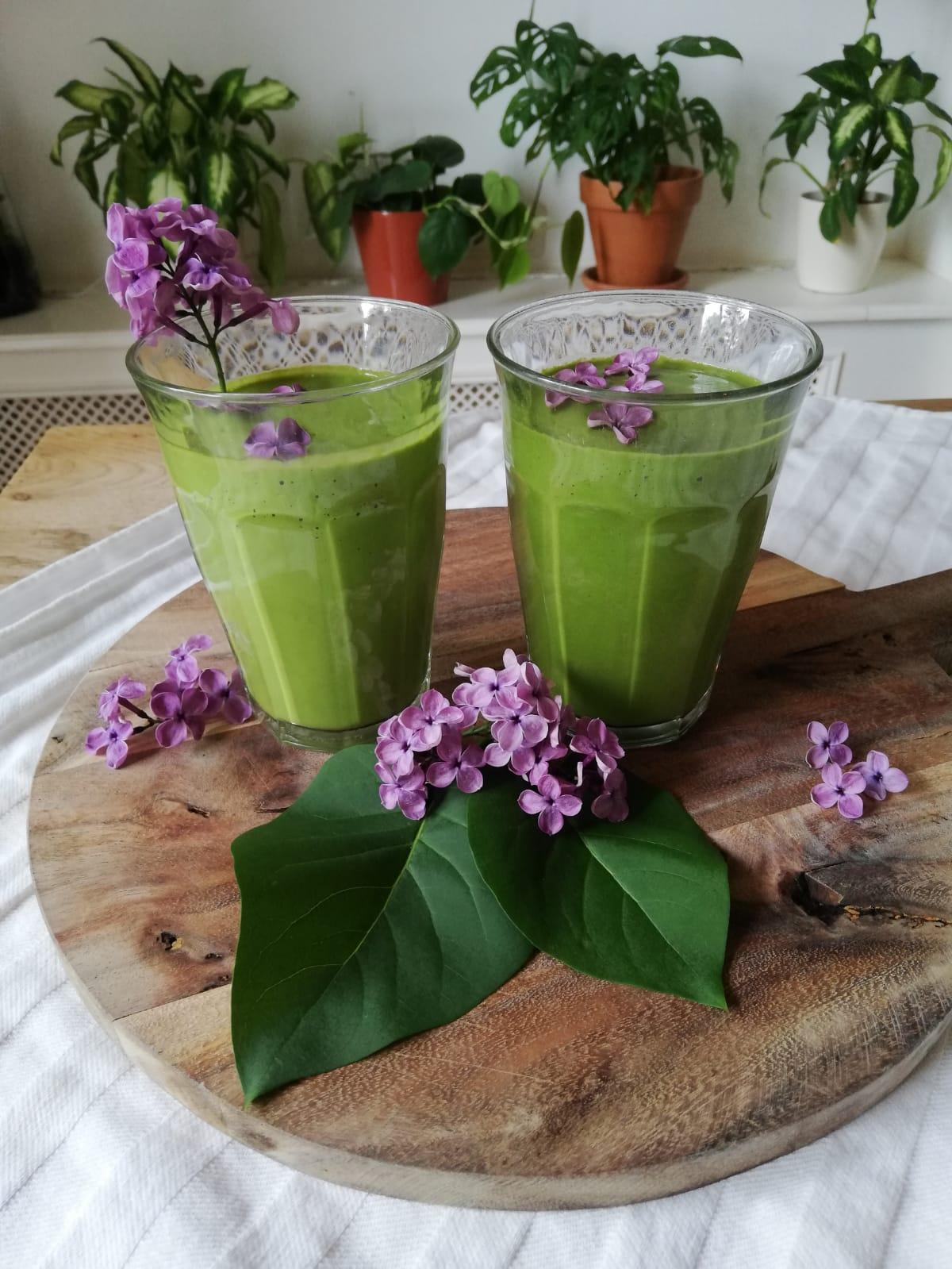 Waarom is Matcha en groene thee zo gezond?